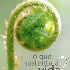 Relatório de gestão 2010 - 2012
